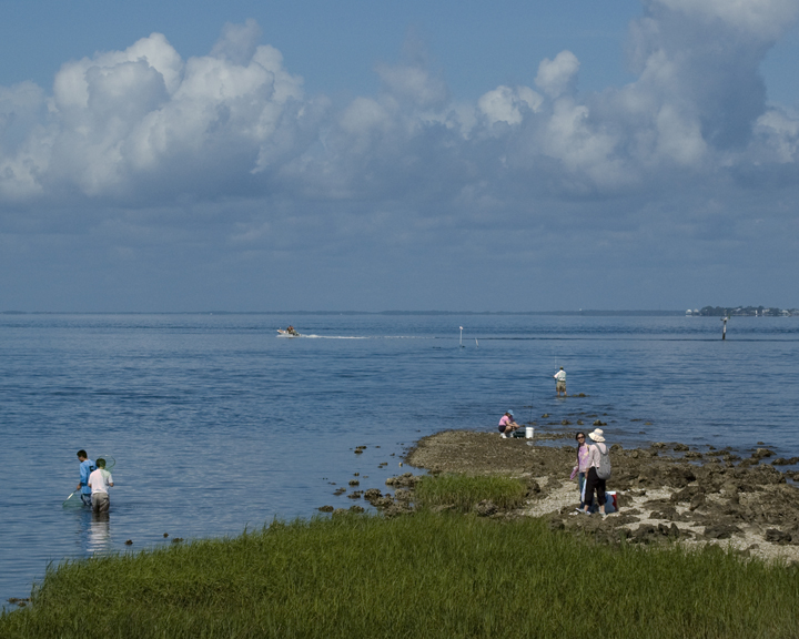 A group of people are enjoying the coast; some are in the water, and some are working over the rocky shoreline.
